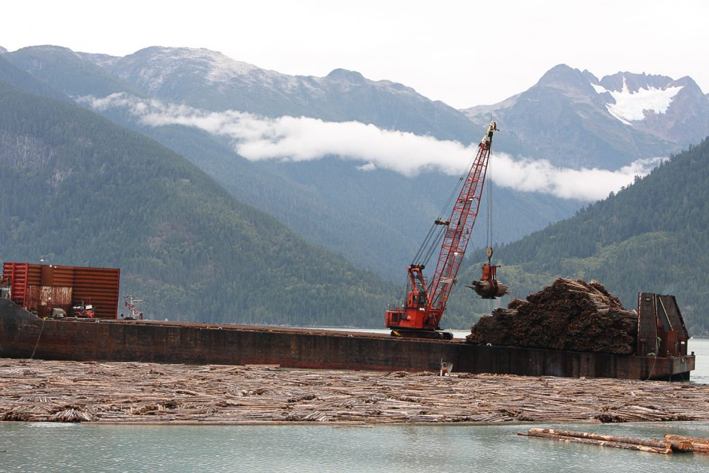 Chilcotin fibre recovery project finding new markets for pulp logs
