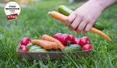 Cascades has launched a recyclable cardboard tray for fresh food packaging. Photo: Cascades