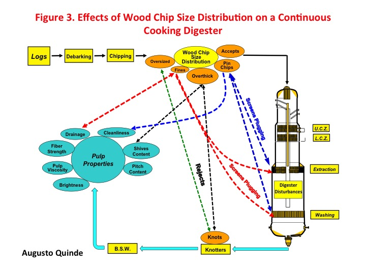 Figure 3. Effects of wood chip size distribution on a continuous cooking digester. Photo: Augusto Quinde