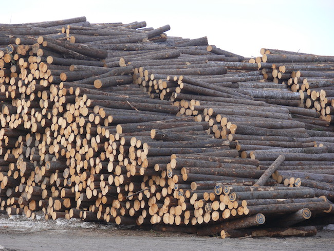 Editorial: Softwood lumber standoff continues