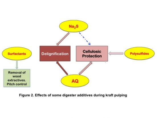 Figure 2. Effects of some digester additives during kraft pulping